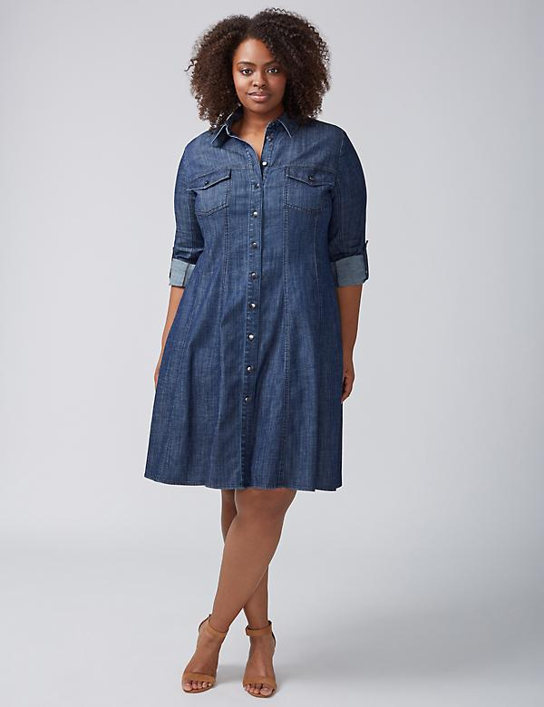 Seamed A-Line Denim Shirtdress