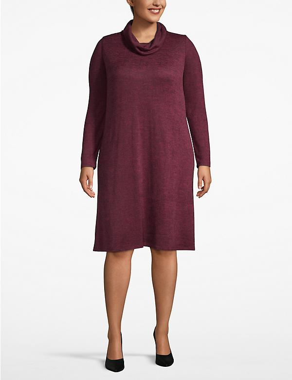 Cozy Touch Cowl Neck Swing Dress